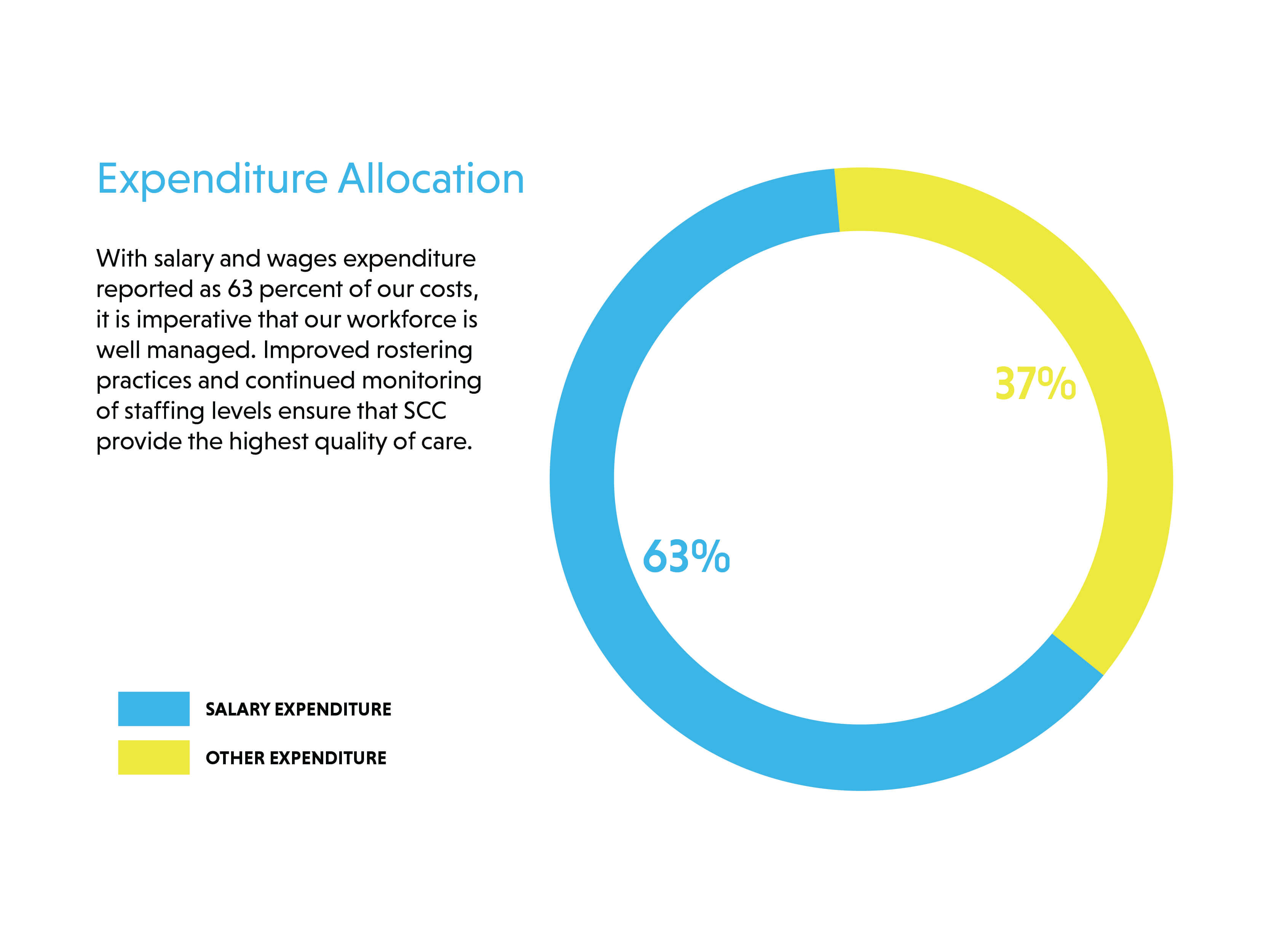 Expenditure Allocation Chart