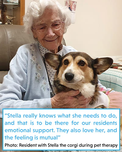 Resident with Stella the corgi during pet therapy